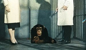 Dr Decker and Margaret with Konga as a chimp
